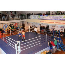 Боксерский ринг ПРОФЕССИОНАЛЬНЫЙ помост 7,8х7,8х1м канаты 6,1х6,1м.