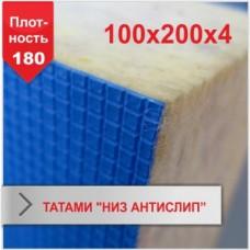 Мат Татами «низ антислип»4 х 100 х 200 (плотность 180)